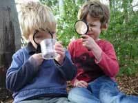 Preschoolers looking through microscopes
