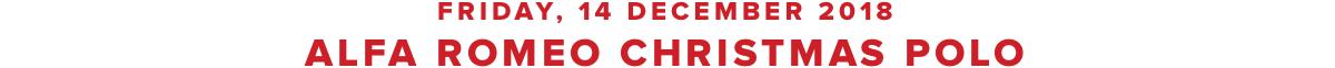 14 December 2018 - Christmas Polo